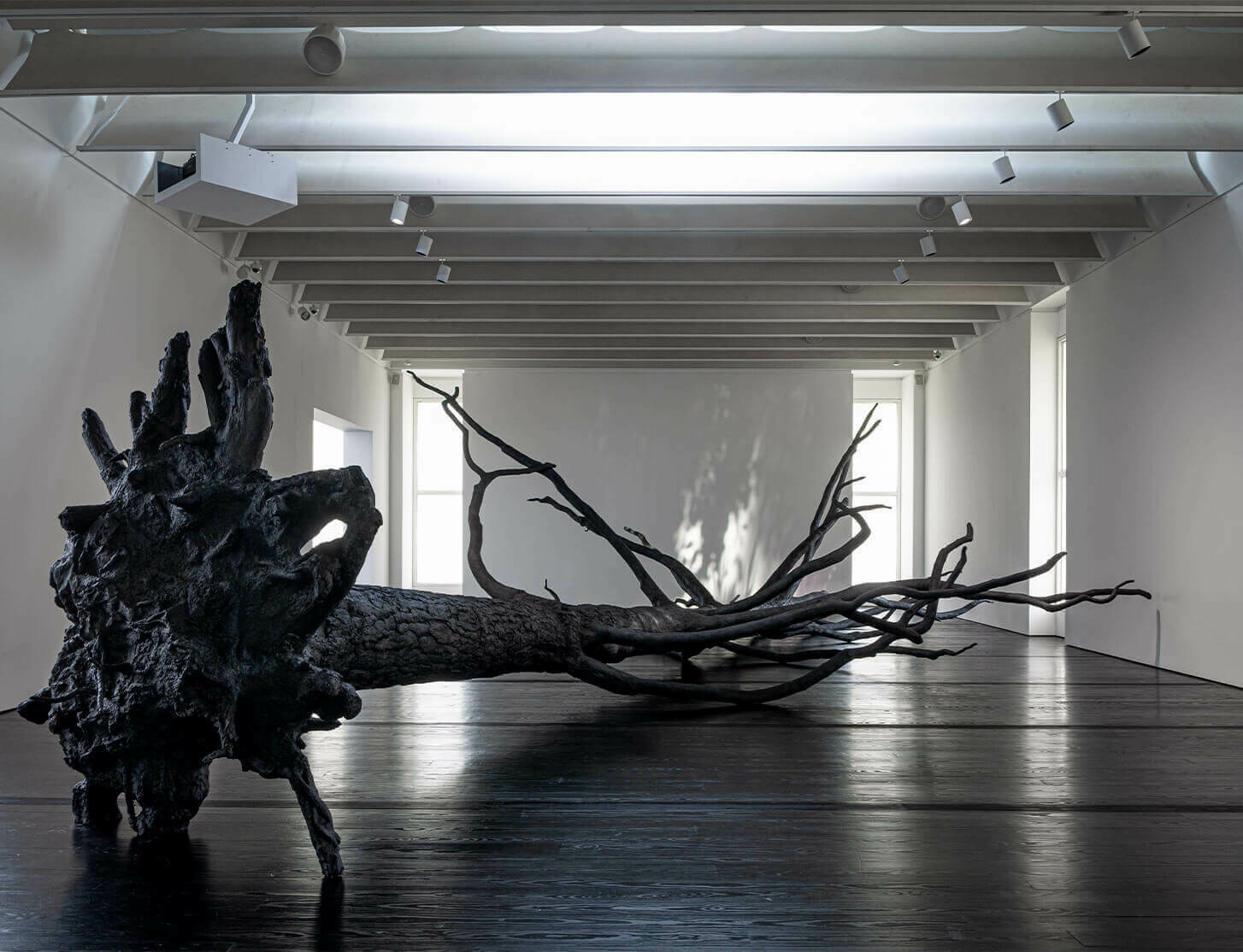 Time, Energy and Bat Guano: A New Exhibit of Overlooked Connections – Allora & Calzadilla in WSJ