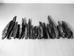 Richard Long: Outback