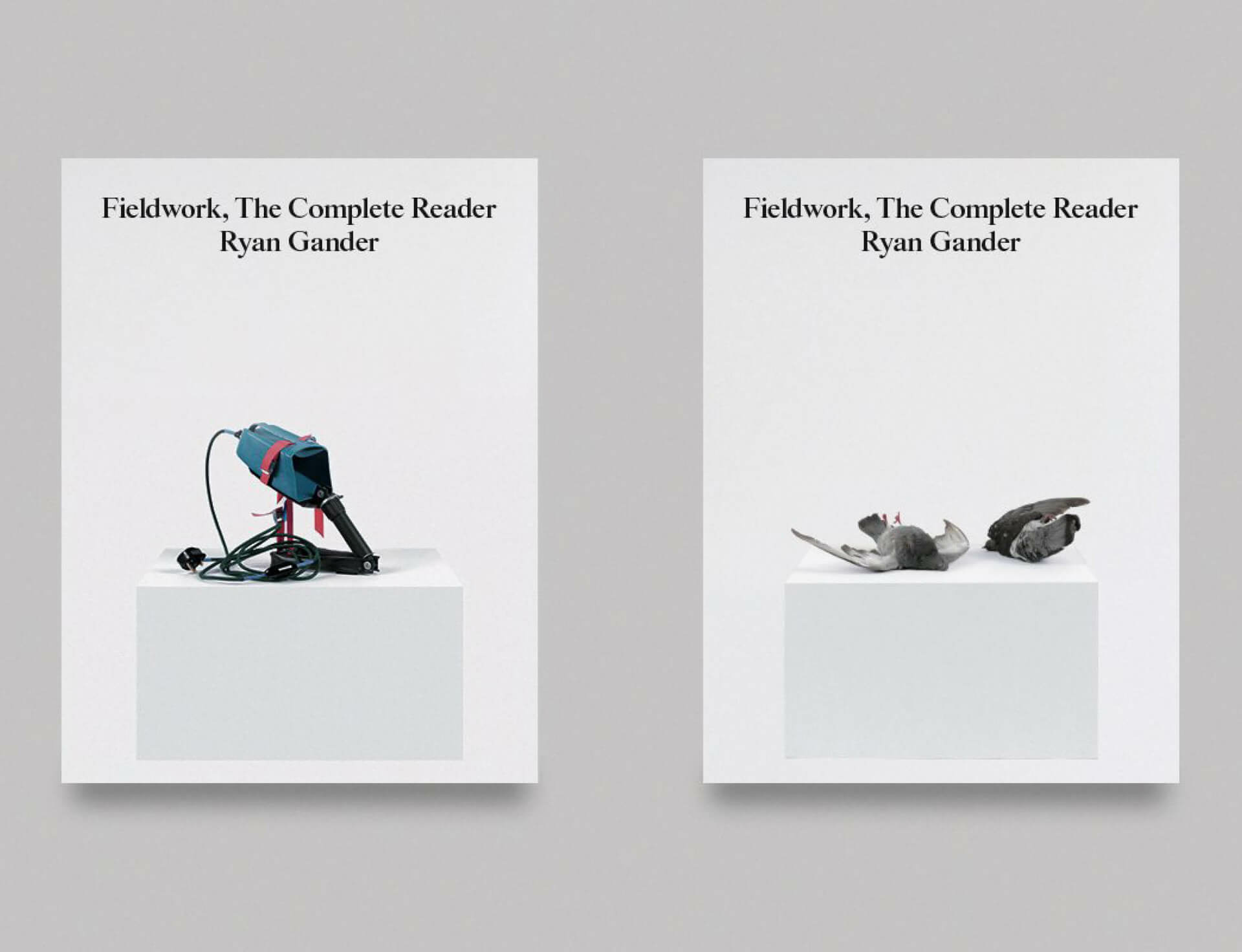 Ryan Gander's 'Fieldwork, The Complete Reader' launches on 3 November